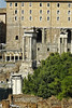 Forum Ruins - Rome Italy