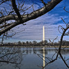 Washington DC - 01-26-08 - 044 NX_dxo edited