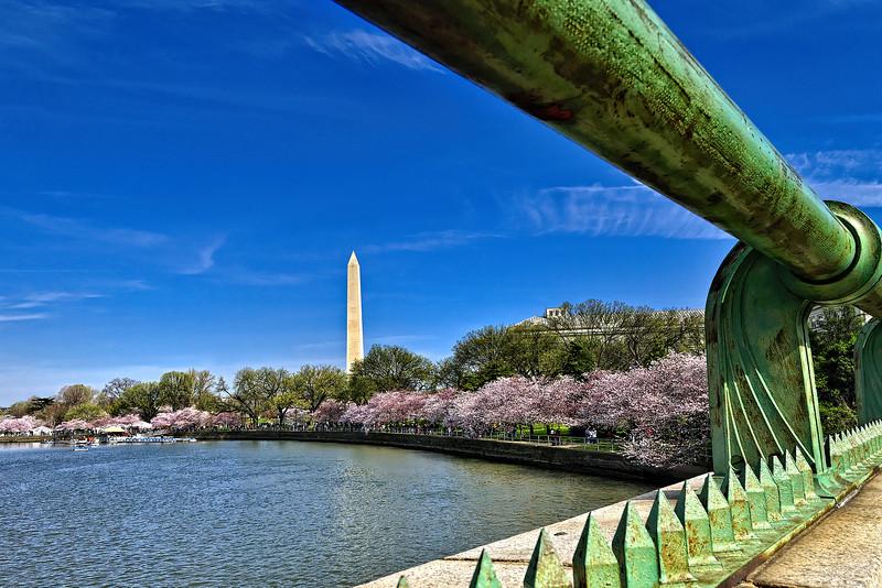 Washington DC Tidal Basin - 03-29-08 - 059 NX_dxo edited