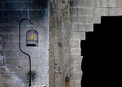 Banksy Birdcage