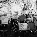 2017-02-04 Devos Protest - Verona Park  AMY_2688
