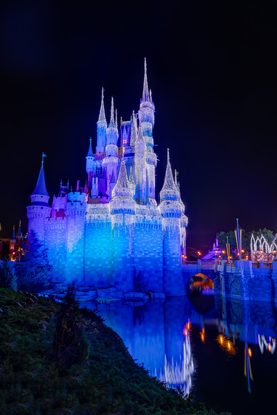 The castle always looks great at WDW but there is something about the way it looks at Christmas time that is special.