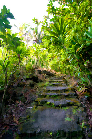Tropical Pathway | Wall Art Resource
