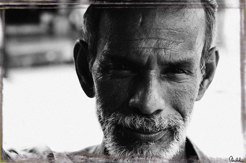 "Ref #4257-1N <span id=""caption""><div class=""photocredit"">Photo © LenScape Photography</div></span>"