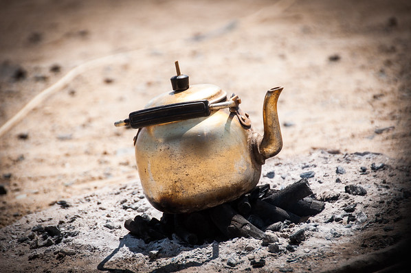 Golden Brew - Red Sea Mountains, Sudan