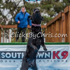 Southtown K9 Trial - Sunday, May 1, 2016 - Frame: 9537