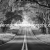 On a road to nowhere (Black and White) – an early morning image of the Beech Avenue, Kingston Lacy, Dorset.