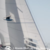 Day 3 of the Cascais Dragon Winter Series - 5th Series