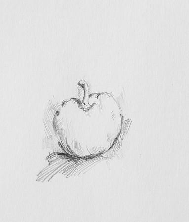 Apple Study, 2015