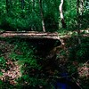First bridge over the Haw is just a few yards from the source spring determined by the U.S. Geological Survey as the origin of the Haw River. N. of Kernersville, NC. ll 4.22.2020