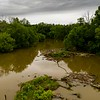 Haw upriver from Great Bend Park dam at Glencoe ll June 12, 2019