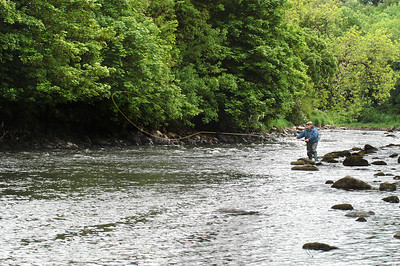 River Mourne - Fishing Paddy;s Stream on the River Mourne, Sion Mills, Co Tyrone, N Ireland