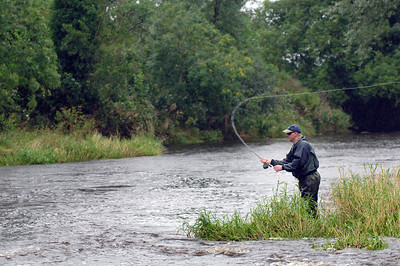 Drumragh River - Fishing the Drumragh River for brown trout and salmon, Omagh, Co Tyrone, N Ireland