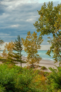 Indiana Dunes Fall-01