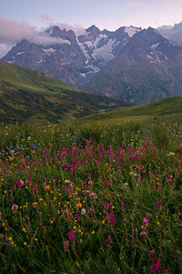 Colorful wildflowers fills the alpine meadows beneath the mighty peaks of Ecrins National Parks in France.