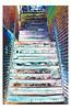 Savannah Stairs 1