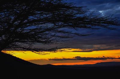 Serengeti. Tanzania, Africa 2009