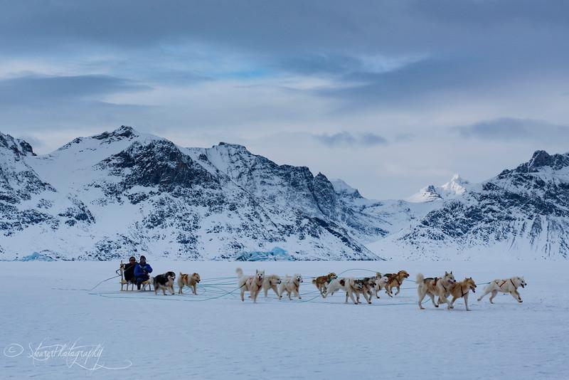 Winning the race - Sermiligaaq, East Greenland 2016