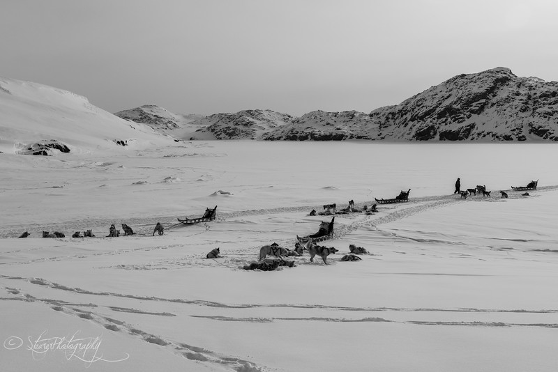 Hunter's break - East Greenland 2016