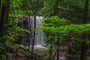 Cucumber Falls 8713