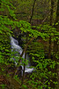 Ricketts Glen Ozone 0851L