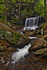 Ricketts Glen B Reynolds 0888L