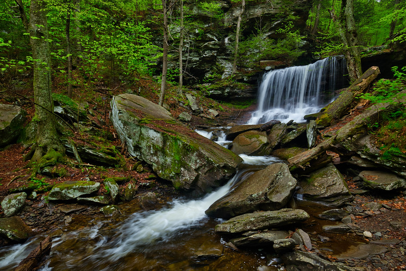 Ricketts Glen B Reynolds 0885L