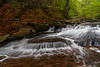 Ricketts Glen Triangle 0873