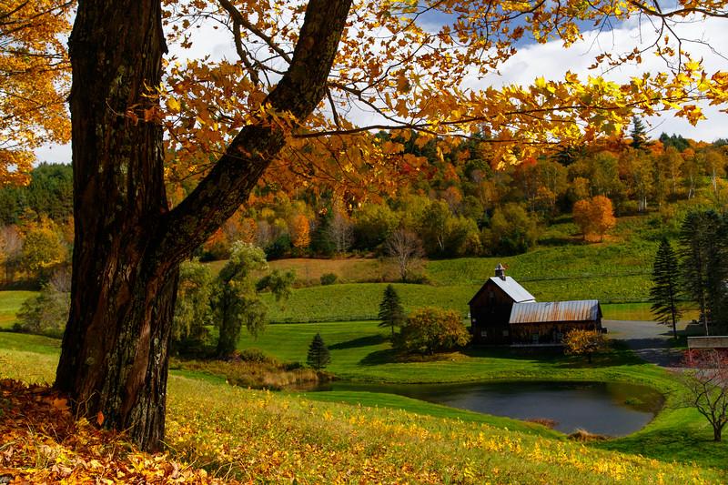 Sleepy Hollow Farm 9240