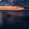Dock n' Tree Jacksonville, Florida