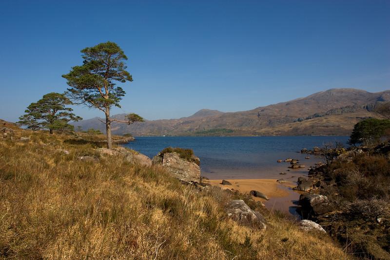 Loch Maree. Scotland John Chapman.