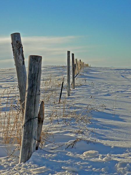 Old fence near Ashton, Idaho. Winter