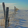 Old fence near Ashton, Idaho. Winter