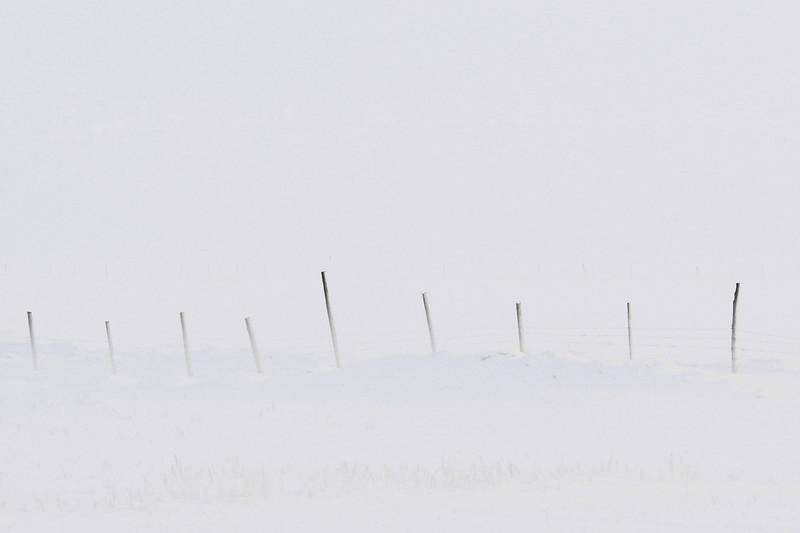 Snow blowing through a fence near Ashton, Idaho