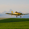 Crop-dusting with a View: 2