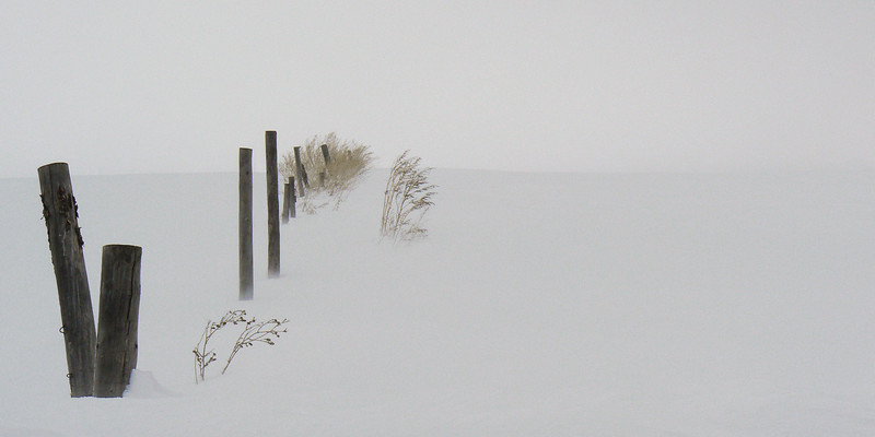 Old Fence near Ashton, Idaho.  Fremont County, Winter
