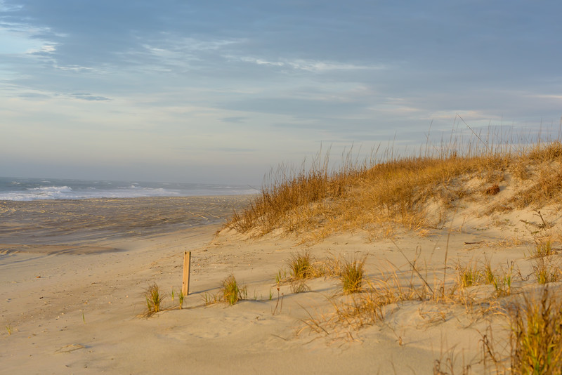 Land and Sea ~ Southern Outer Banks