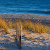 sand fence ~ beach preservation and dune restoration ~ Southern Outer Banks