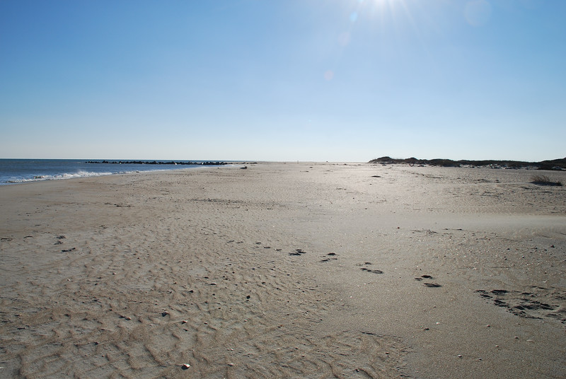 Smell the Sea ~ Southern Outer Banks