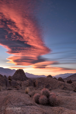 Owens Valley View - Alabama Hills, CA
