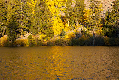 Autumn Lake, Twin Lakes, Mammoth Ca.