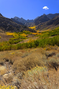 IMG_1329 Autum in the Eastern Sierra