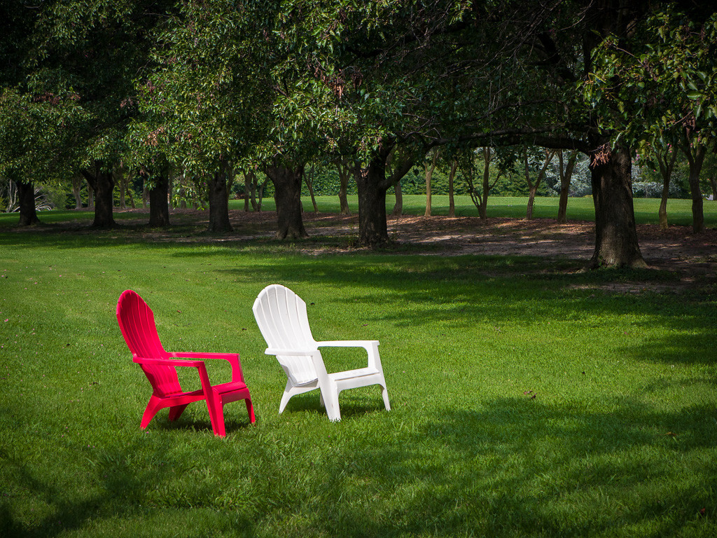 A red and a white chair sits on green grass lawn lined with trees in the Norfolk Botanical Garden in Norfolk Virginia