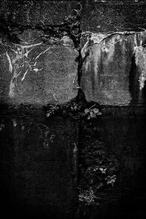 Rift [Erie Canal, NY]