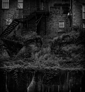 Brick and Ivy [Erie Canal, NY]