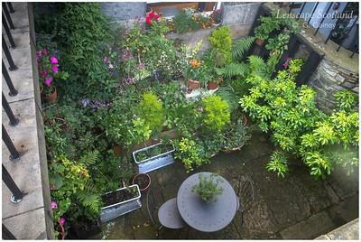 Basement garden, Dublin Street