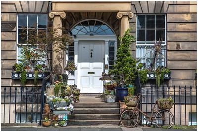 Doorstep garden, Henderson Row (2)
