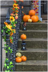 Hallowe'en doorstep pumpkins (3)