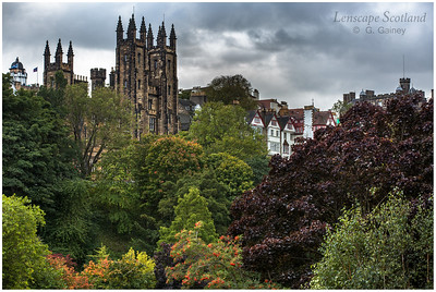 Autumn in East Princes Street Gardens (2)