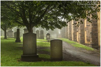 Greyfriars graveyard in the mist (2)